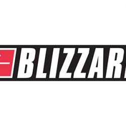 blizzard_google_plus_share